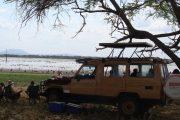 Selous 3 Days Safari Package