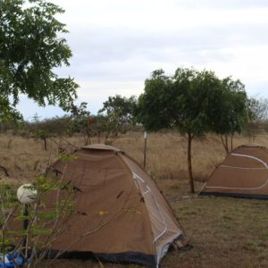 camping-safari-wildness-safari-tanzania